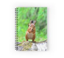 Cute squirrel Spiral Notebook