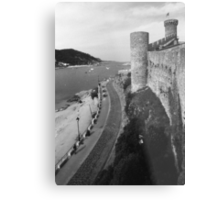 From the Castle Wall Metal Print