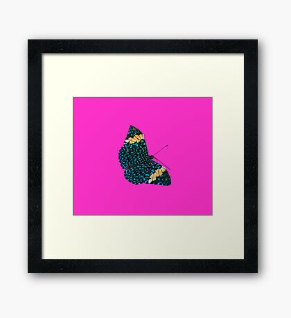 Butterfly on Purple Framed Print