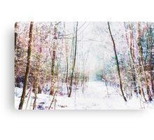 Winter Wonder Woodland Canvas Print