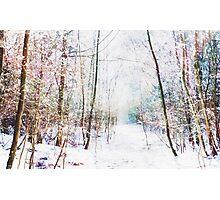 Winter Wonder Woodland Photographic Print
