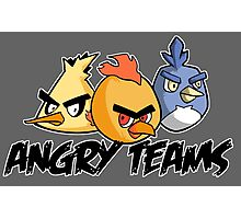 Angry teams Photographic Print