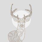 grey deer by roxycolor