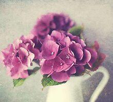Winter Hydrangea  by Nicola  Pearson