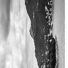 Dubrovnik Landscape BW [iPad case] by Matti Ollikainen