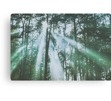 Mystical UFO haunted forest Canvas Print