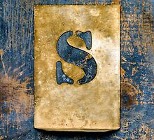Letter S by Ricard Vaqué