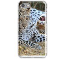 Leopard siblings playtime iPhone Case/Skin
