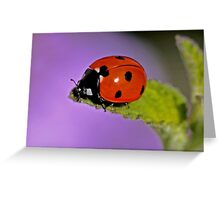 Bug Off Greeting Card