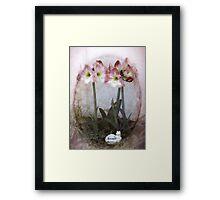 Grandma's Amaryllis Garden Framed Print