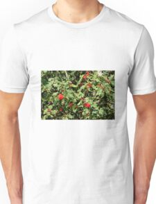 Red berrie tree Unisex T-Shirt