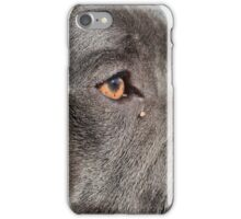 Doge iPhone Case/Skin