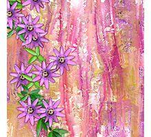 Passion Flowers  Photographic Print