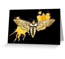 Death's Head Moth Greeting Card
