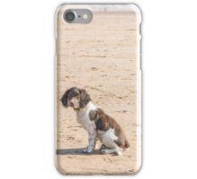 Springer Puppy iPhone Case/Skin