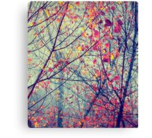 Trees - free spirit Canvas Print