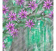 Passion Flower  Photographic Print