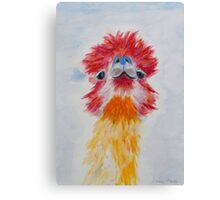 Allie Alpaca Canvas Print