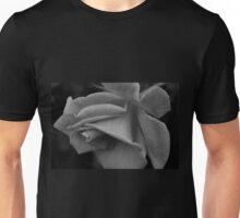 Falling Kisses Unisex T-Shirt