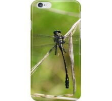 Dragon Hunter iPhone Case/Skin