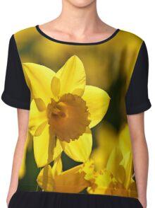 Yellow spring Daffodils Chiffon Top