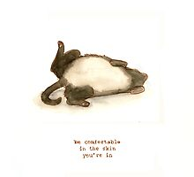 Cattism 14: Be Comfortable In the Skin You're In by Whitney Mattila