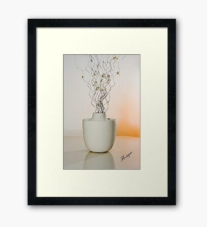 Room Decor Framed Print