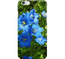 Delphinium Diamond Blue iPhone Case/Skin