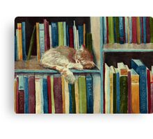Quite Well Read Canvas Print