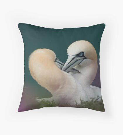 Northern Gannets Throw Pillow
