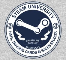 Steam University: Hats, Trading Cards & Sales by Chronotaku