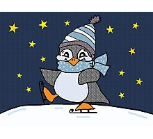 Little Penguin Photographic Print