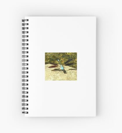 Rock Dragon   Spiral Notebook