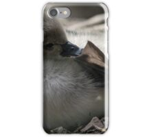 Cygnet iPhone Case/Skin