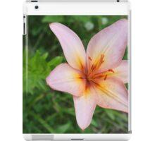 Delicate Colours iPad Case/Skin