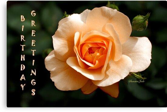 Birthday Greetings Rose by SummerJade