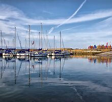 Lyme Regis Harbour by Susie Peek