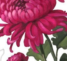 Chrysanthemum - acrylic painting Sticker