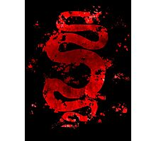 Spartacus - Red Serpent Photographic Print
