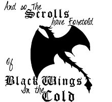 Black Wings In The Cold Photographic Print