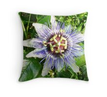 Passiflora Against Green Foliage In A Garden Throw Pillow