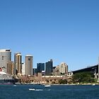 Sydney Harbour Panoramic by Richard Cassar