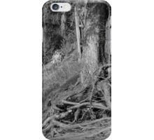 Tree With Exposed Roots iPhone Case/Skin