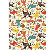 So many cats! Cute pattern! Photographic Print