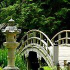 Japanese Garden - Maymont Park    ^ by ctheworld