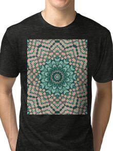 Ornament graphics . Tri-blend T-Shirt