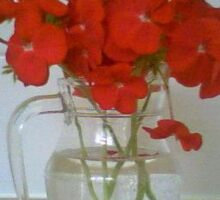 Red flowers in a vase Sticker
