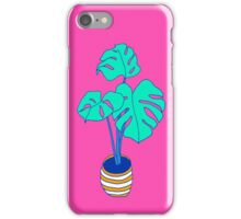 House Plant 01 iPhone Case/Skin
