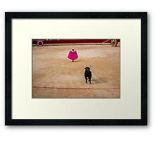 Bull Fight Framed Print