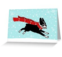 Holiday Boston Terrier Wearing Winter Scarf Greeting Card